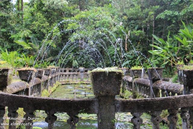 Fontaine Paronella Parc